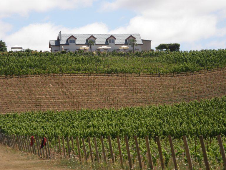 Oregon's Willamette Valley: Genuine Wines From Genuine People