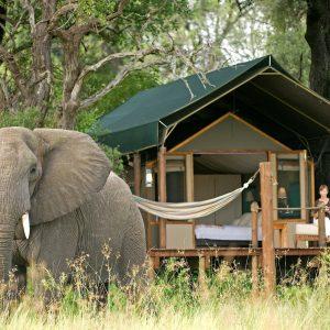 luxury-lodge-botswana-StanleysCamp-05