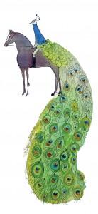 peacock_equestrian