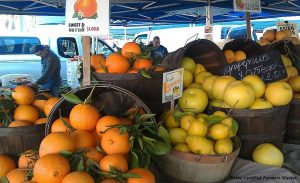 Irvine farmers market citrus