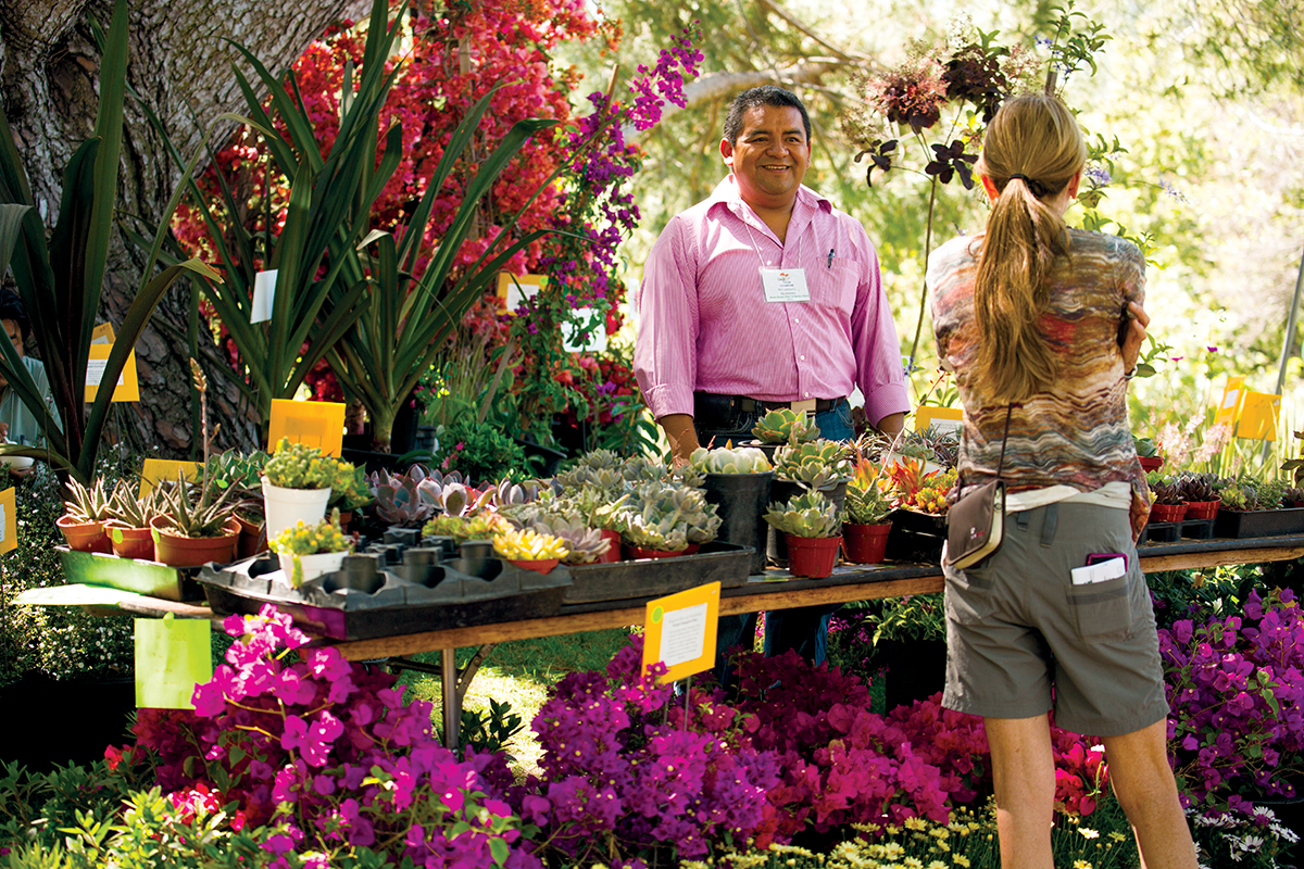 Green Scene Grows Up After 43 years the Fullerton Event is More Than a Flow